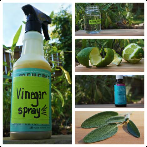 DIY Sage & Lime Cleaning Spray