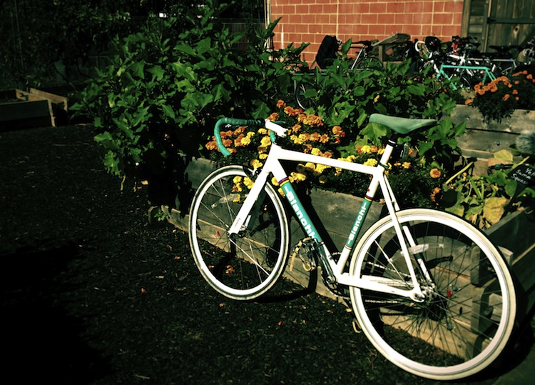 urban garden bike tour