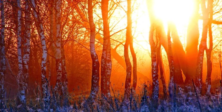 winter-sunset-nature-beautiful-header